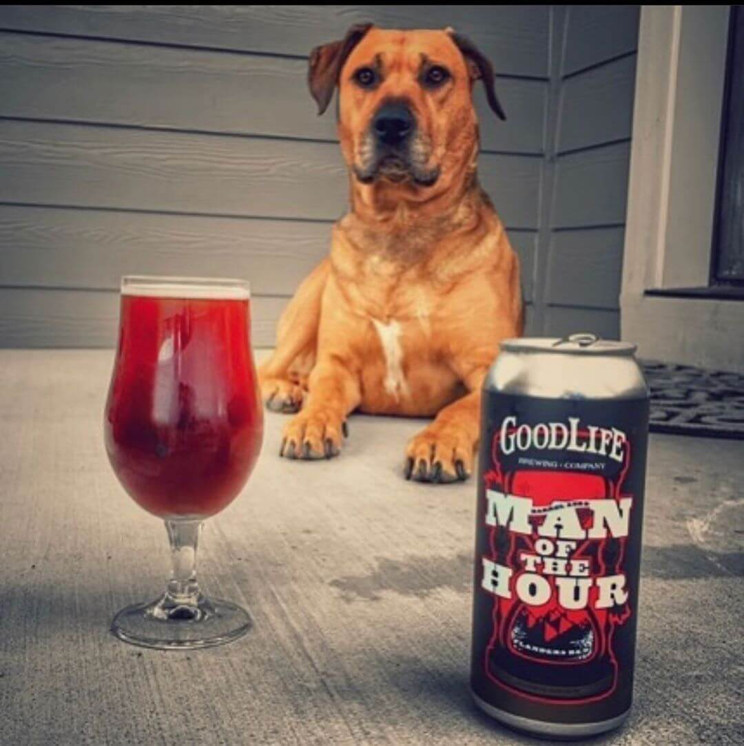 We are pretty sure this is exactly how Curt would want to end his weekend, too: his dog and a beer! Great photo courtesy of @wymacraft! Remember, you can get your hands on these crowlers at the pub for a limited time! #goodlifebrewing #manofthehour
