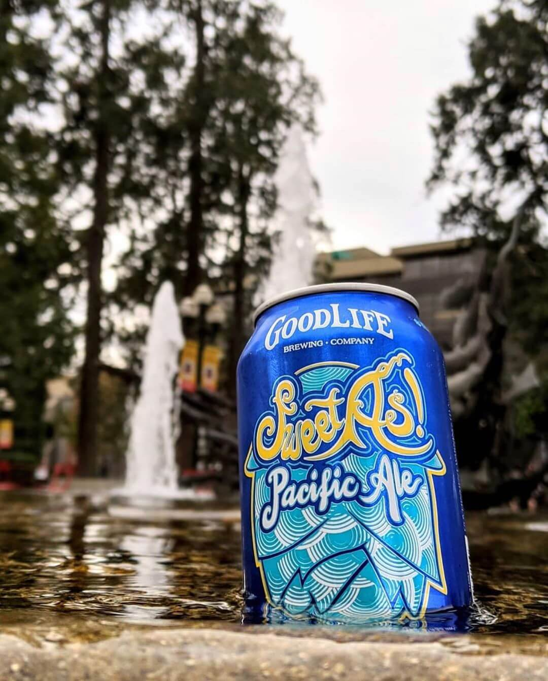 That's one sweet as photo!  Photo: @explorewithbeer